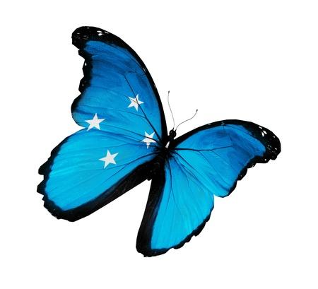 micronesia: 흰색 배경에 고립 된 미크로네시아 플래그 나비 비행,