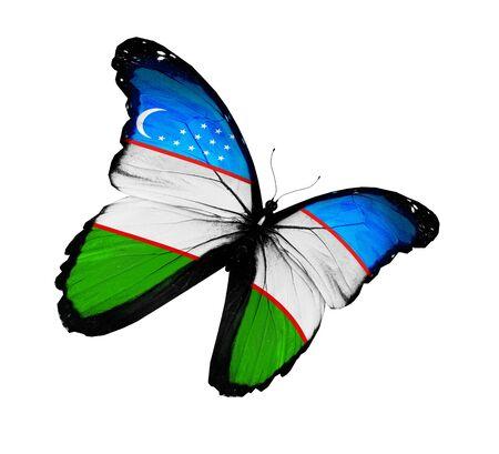 uzbek: Uzbek flag butterfly flying, isolated on white background Stock Photo