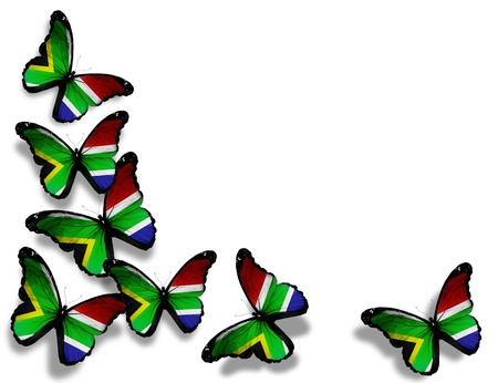 south african: South Africa flag butterflies, isolated on white background
