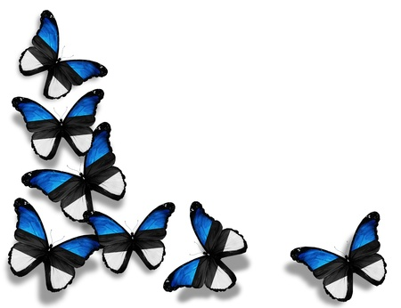 estonia: Estonian flag butterflies, isolated on white background Stock Photo