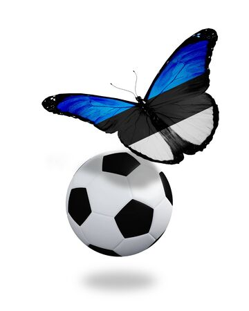Concept - butterfly with Estonian flag flying near the ball, like football team playing   photo
