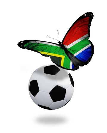 ball like: Concept - butterfly with South Africa flag flying near the ball, like football team playing