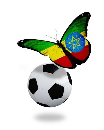 ethiopia flag: Concept - butterfly with Ethiopia flag flying near the ball, like football team playing   Stock Photo