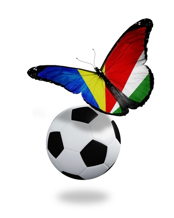 ball like: Concept - butterfly with Seychellois flag flying near the ball, like football team playing
