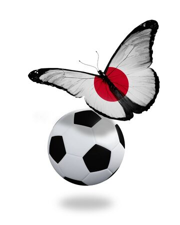 ball like: Concept - butterfly with Japanese flag flying near the ball, like football team playing