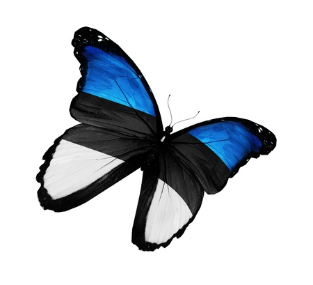 Estonian flag butterfly flying, isolated on white background photo