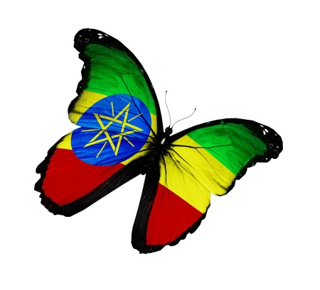 Ethiopia flag butterfly flying, isolated on white background Stock Photo - 15363850