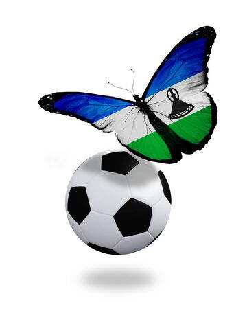 ball like: Concept - butterfly with Lesotho flag flying near the ball, like football team playing
