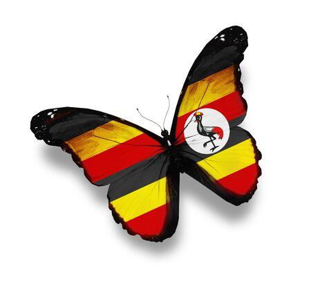 Uganda: Uganda flag butterfly, isolated on white