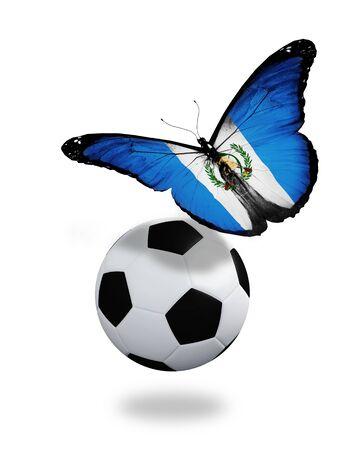 bandera de guatemala: Concepto - mariposa con Guatemala bandera ondeando cerca de la pelota, como el equipo de f�tbol que juega Foto de archivo