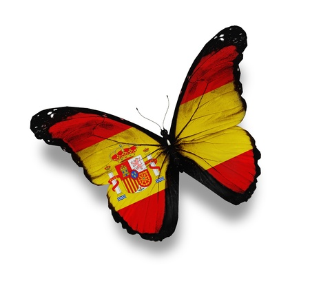 yellow butterflies: Spanish flag butterfly, isolated on white Stock Photo
