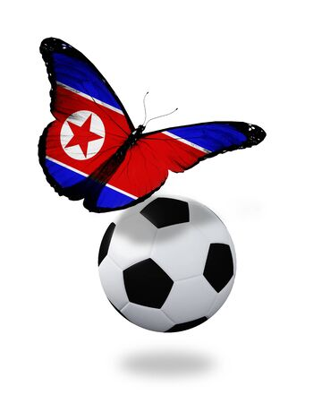 ball like: Concept - butterfly with North Korea flag flying near the ball, like football team playing