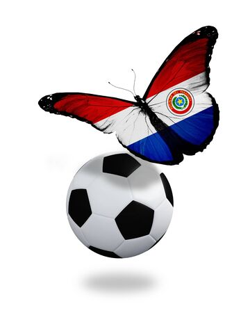 ball like: Concept - butterfly with Paraguay flag flying near the ball, like football team playing