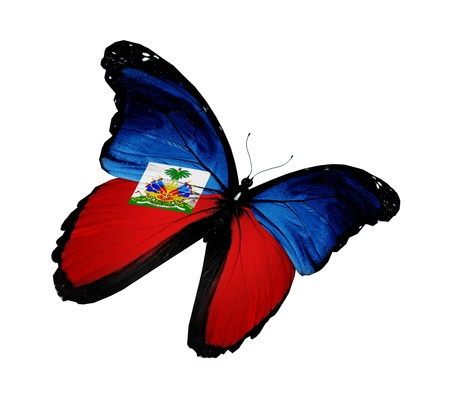 Haiti flag butterfly flying, isolated on white background photo