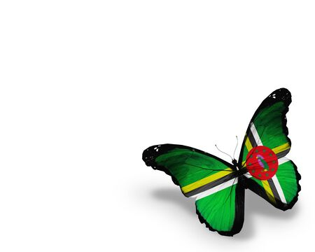 dominica: Dominica flag butterfly, isolated on white background Stock Photo