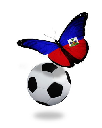 Concept - butterfly with Haiti flag flying near the ball, like football team playing   photo