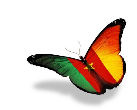 Cameroon flag butterfly flying, isolated on white background Stock Photo - 16063167