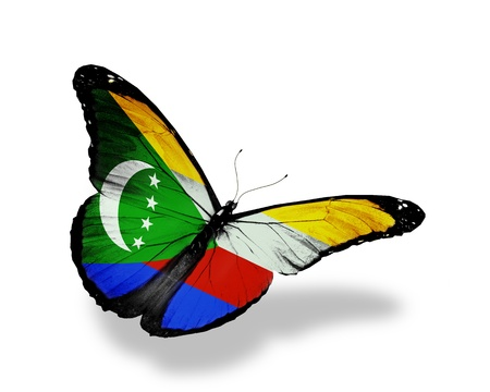 comoros: Comoros flag butterfly flying, isolated on white background Stock Photo