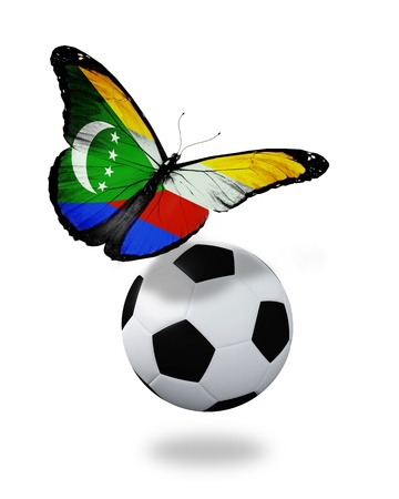 ball like: Concept - butterfly with Comoros flag flying near the ball, like football team playing   Stock Photo