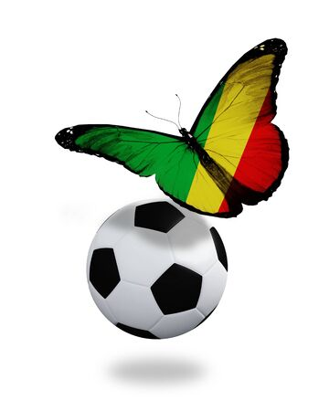 ball like: Concept - butterfly with Republic Congo flag flying near the ball, like football team playing   Stock Photo