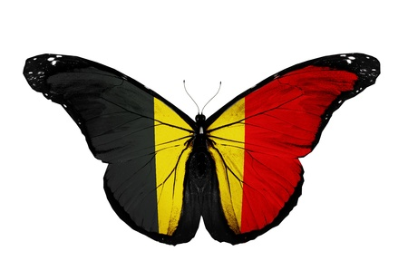 Belgium flag butterfly flying, isolated on white background photo
