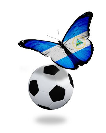 ball like: Concept - butterfly with Nicaragua flag flying near the ball, like football team playing   Stock Photo