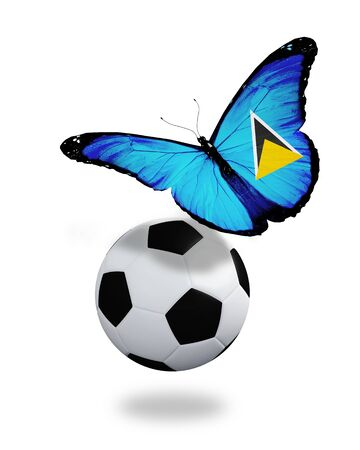 ball like: Concept - butterfly with Saint Lucia flag flying near the ball, like football team playing