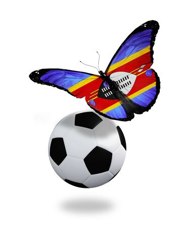 ball like: Concept - butterfly with Swaziland flag flying near the ball, like football team playing
