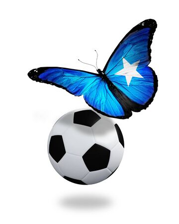 somalian: Concept - butterfly with Somalian flag flying near the ball, like football team playing   Stock Photo