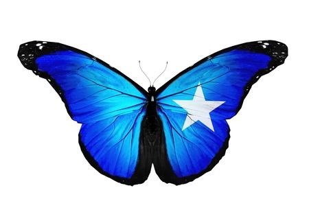 somalia: Somalia flag butterfly flying, isolated on white background Stock Photo
