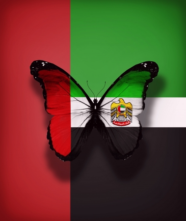 UAE flag butterfly with coat of arms, isolated on flag background photo