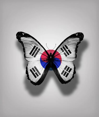 South Korea flag butterfly, isolated on flag background photo