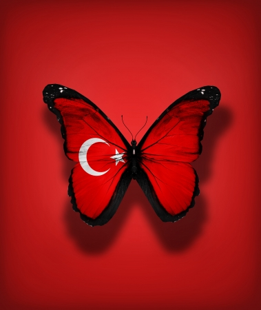 Turkish flag butterfly, isolated on flag background photo