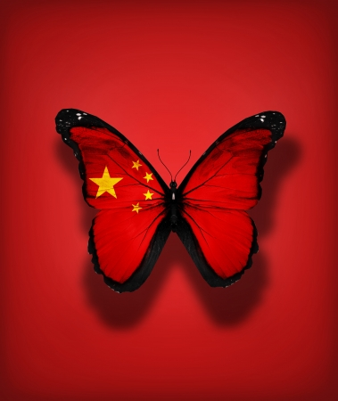 Chinese flag butterfly, isolated on flag background photo