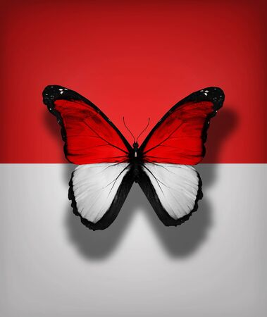 monegasque: Monaco flag butterfly, isolated on flag background