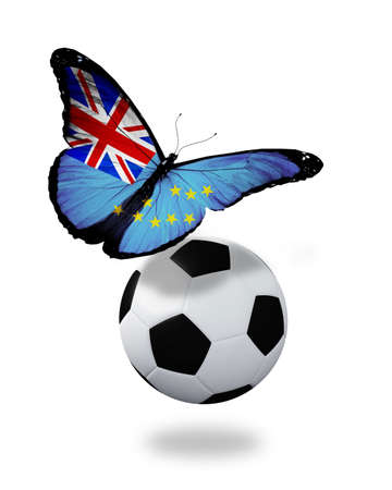ball like: Concept - butterfly with Tuvalu flag flying near the ball, like football team playing   Stock Photo