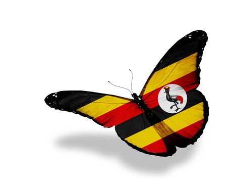 Uganda flag butterfly flying, isolated on white background photo