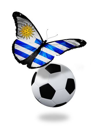 ball like: Concept - butterfly with Uruguay flag flying near the ball, like football team playing