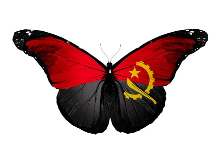 angola: Angola flag butterfly, isolated on white background Stock Photo