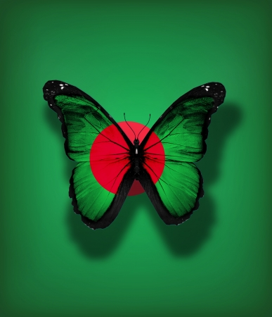 Bangladesh flag butterfly, isolated on flag background