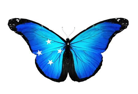 micronesia: Micronesia flag butterfly, isolated on white background