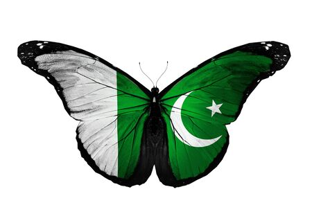 Pakistan flag butterfly flying, isolated on white background Stock Photo - 17215531