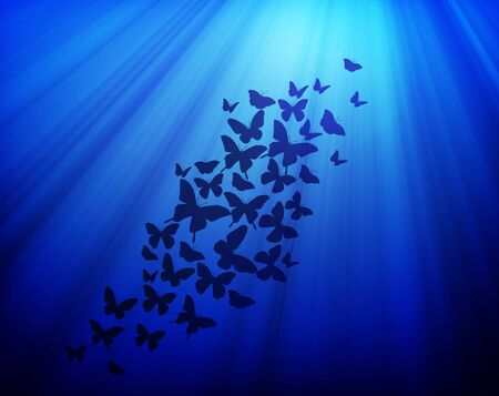 Dark blue background with butterflies photo