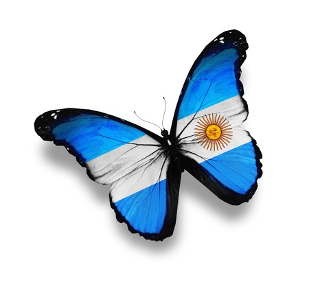 argentine: Argentine flag butterfly, isolated on white