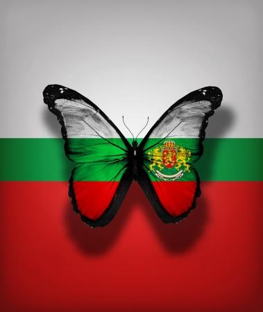 Papillon drapeau bulgare avec le manteau des bras, isolé sur fond de drapeau