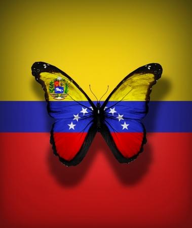 bandera de venezuela: Venezuela bandera mariposa con el escudo de armas, aislado en el fondo de la bandera