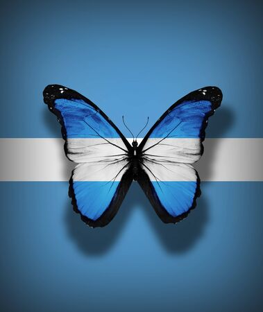 Argentinean flag butterfly, isolated on flag background photo
