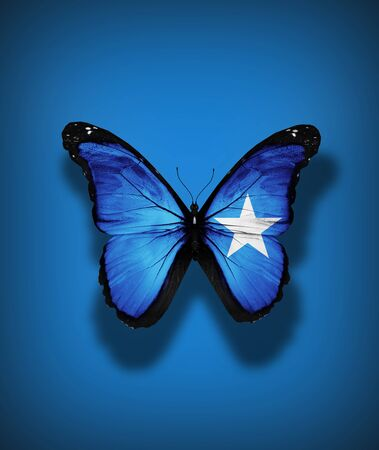 Somalia flag butterfly, isolated on flag background