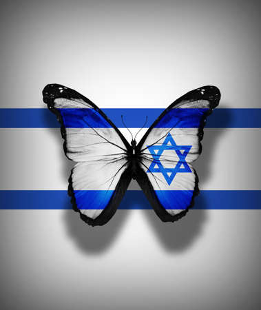 Israeli flag butterfly, isolated on flag background photo