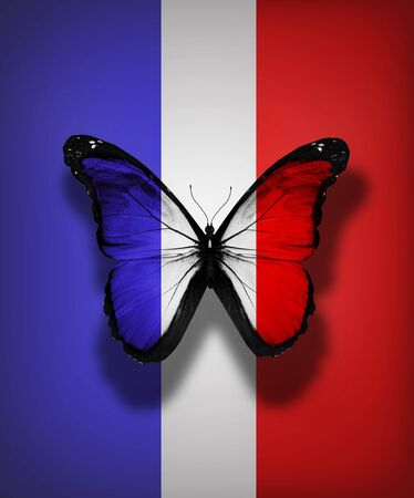 French flag butterfly, isolated on flag background photo
